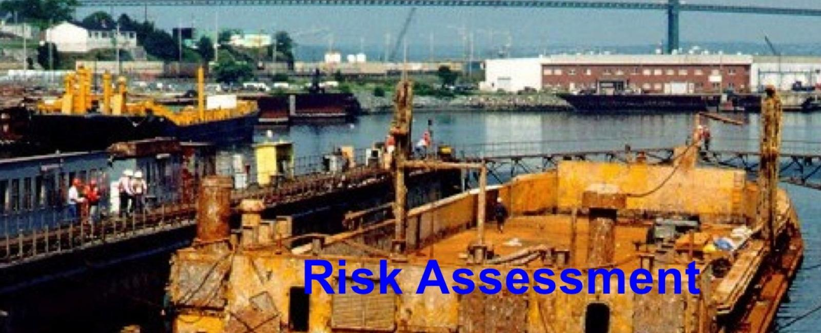 Risk Assessment Irving Whale Barge